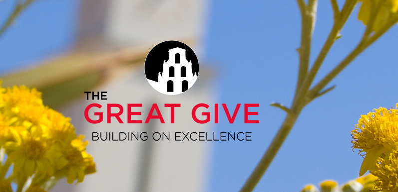 What's so Great about the Great Give?